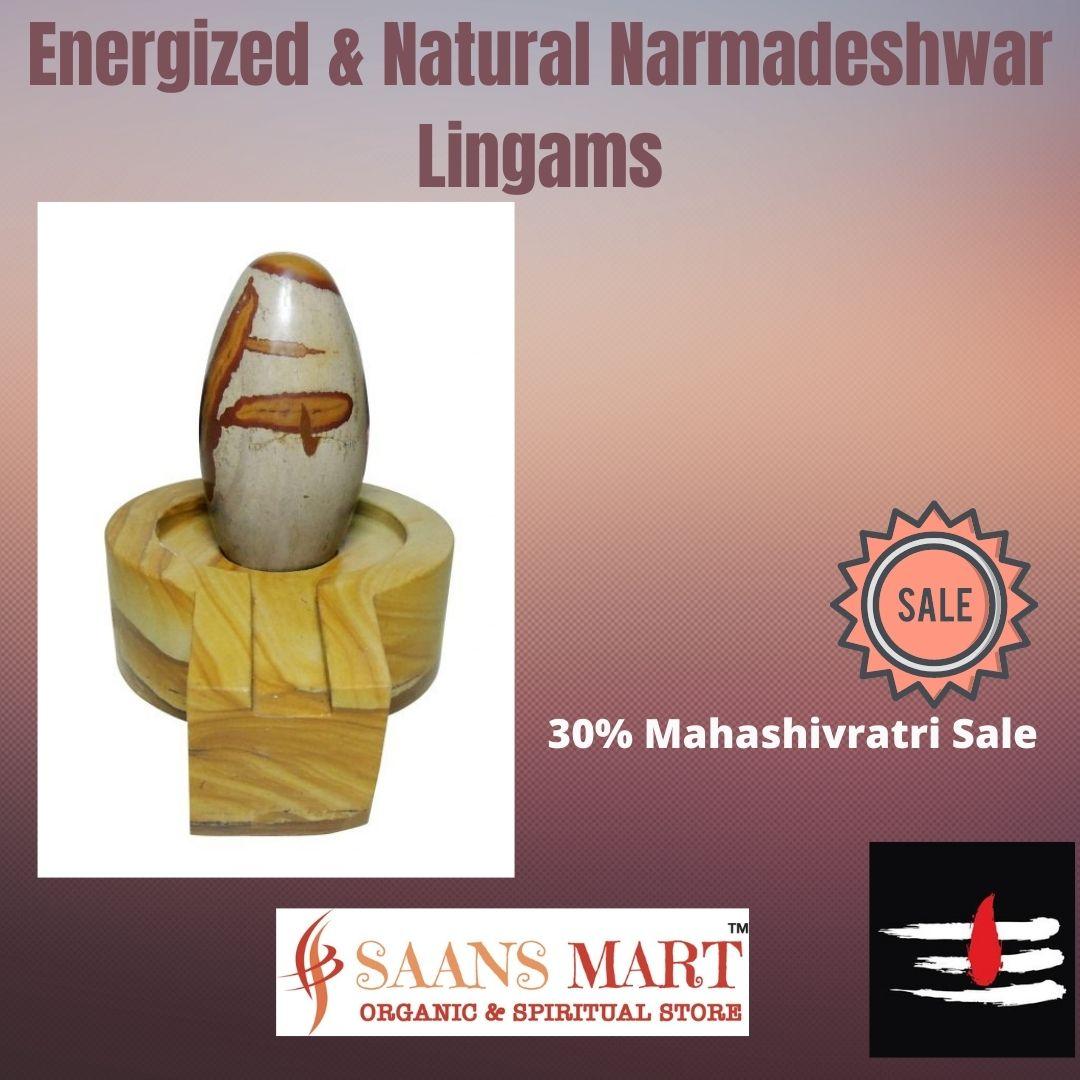 Narmada Shiva lingham